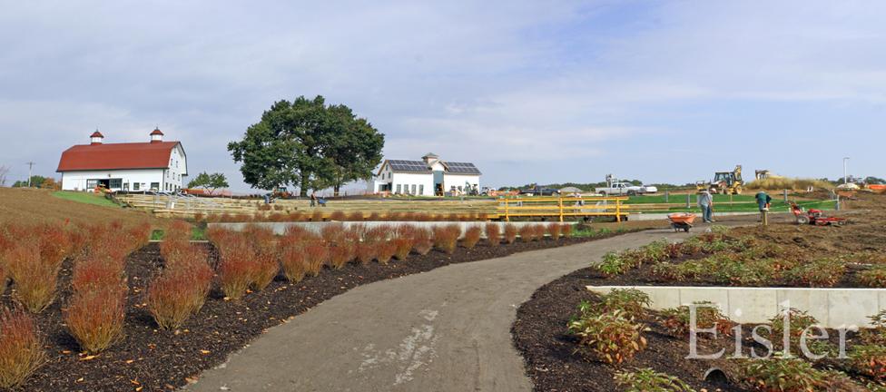 Rain gardens in Eden Hall.