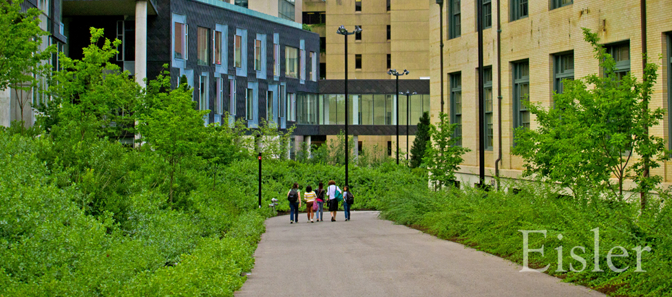 Students walk to class between buildings at Gates Science Center.